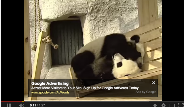 Hump Day: Pandas Playing